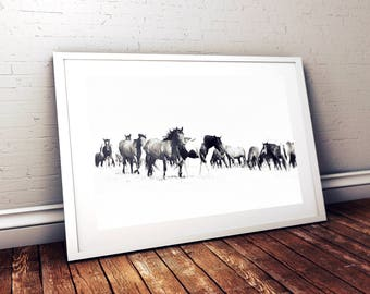 Wild Horses Print *Frame not included*