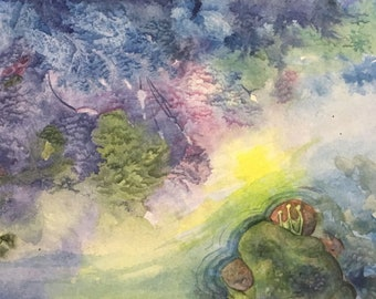 The Frog and the Coral