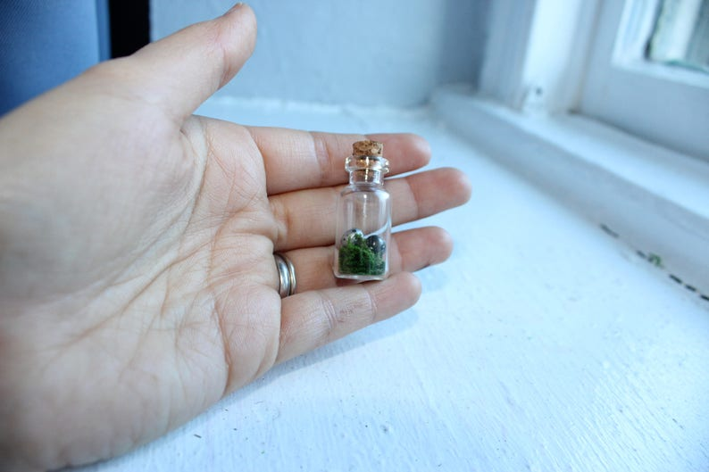 Miniature dragon/'s egg in glass bottle