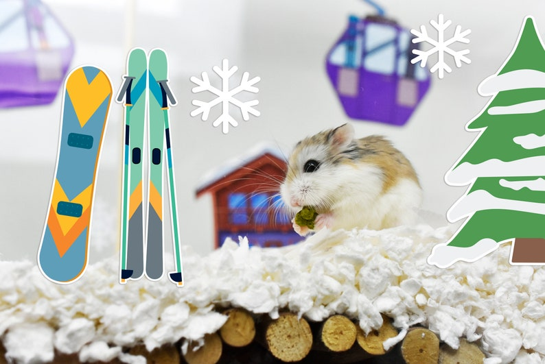 Ski Resort Cage Theme Stickers for Hamsters Gerbils Fish | Etsy