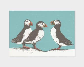 Puffins – silkscreen print, drawing, birds