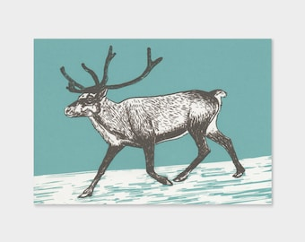 Reindeer – silkscreen print, drawing