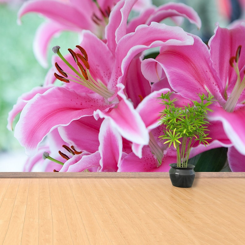 wallpaper Pink oriental lily  wall decor nature wall covering large photowallpaper W#177 Pink lily removable or traditional wall mural