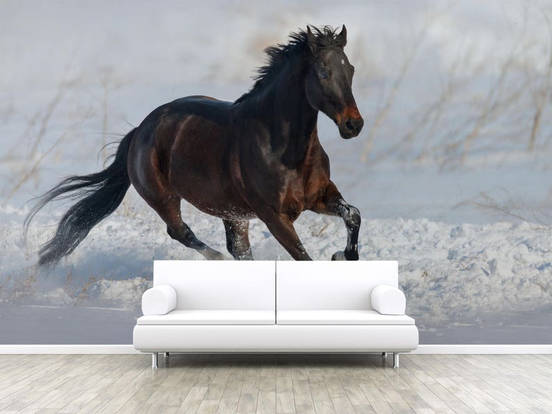 wallpaper Wall Mural Brown horse run in snow 3D photo Removable Wall Wallpaper W#48 Peel and Stick realistic mural Self adhesive