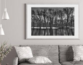 Black and White Winter Trees Photo Print | Tree Wall Art | Black and White Photography | (5x7, 8x10, 12x18, 16x24, 20x30, 24x36, 40x60)