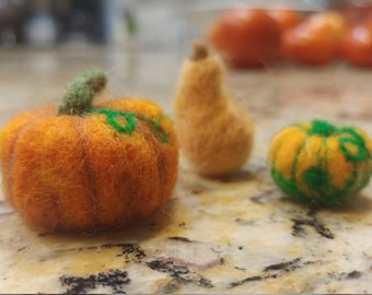 Wool Felt Gourds/Squash