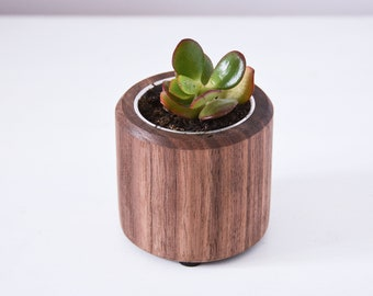 Short Succulent Planter, crafted from Walnut, wooden desk accessories, office decor, unique office gift, made in Australia
