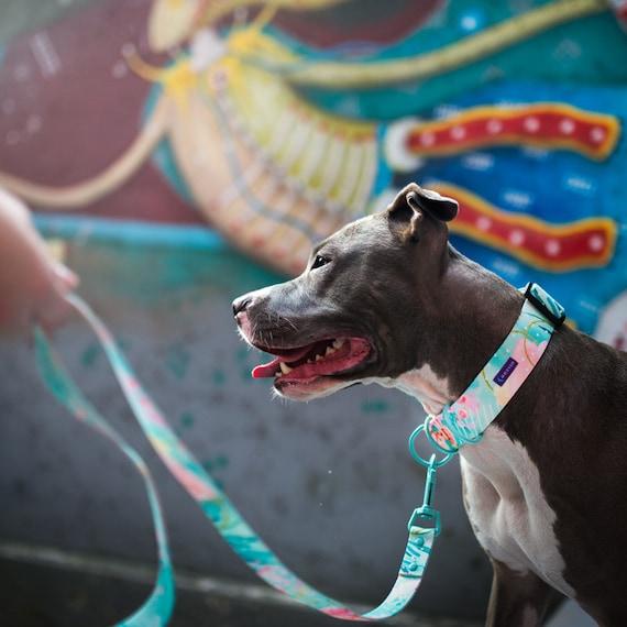 Einstellbare Hund Geschirr Pastell Druck abstrakte Muster   Etsy