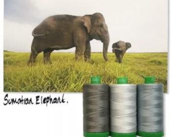 Aurifil SUMATRAN ELEPHANT Color Builder Mako Cotton 40 Weight Wt Large Spool Grey Gray Dove Quilting Thread Set of 3 2600 2610 5004