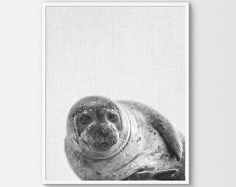 Seal Print - B&W and Bonus *COLOR* - Digital Download - Swedish Scandinavian Nordic - Ocean Arctic - Animal Nursery Wall Art