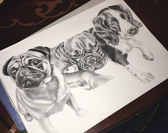 Custom Hand Drawn Pencil Pet Portrait Drawing A3