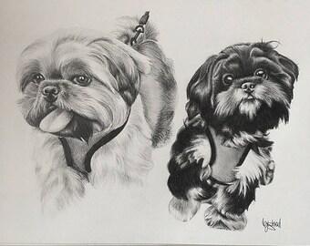Custom Hand Drawn Pencil Pet Portrait Drawing A4