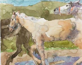 "Palomino 8"" x 8"" Original Watercolor Painting"