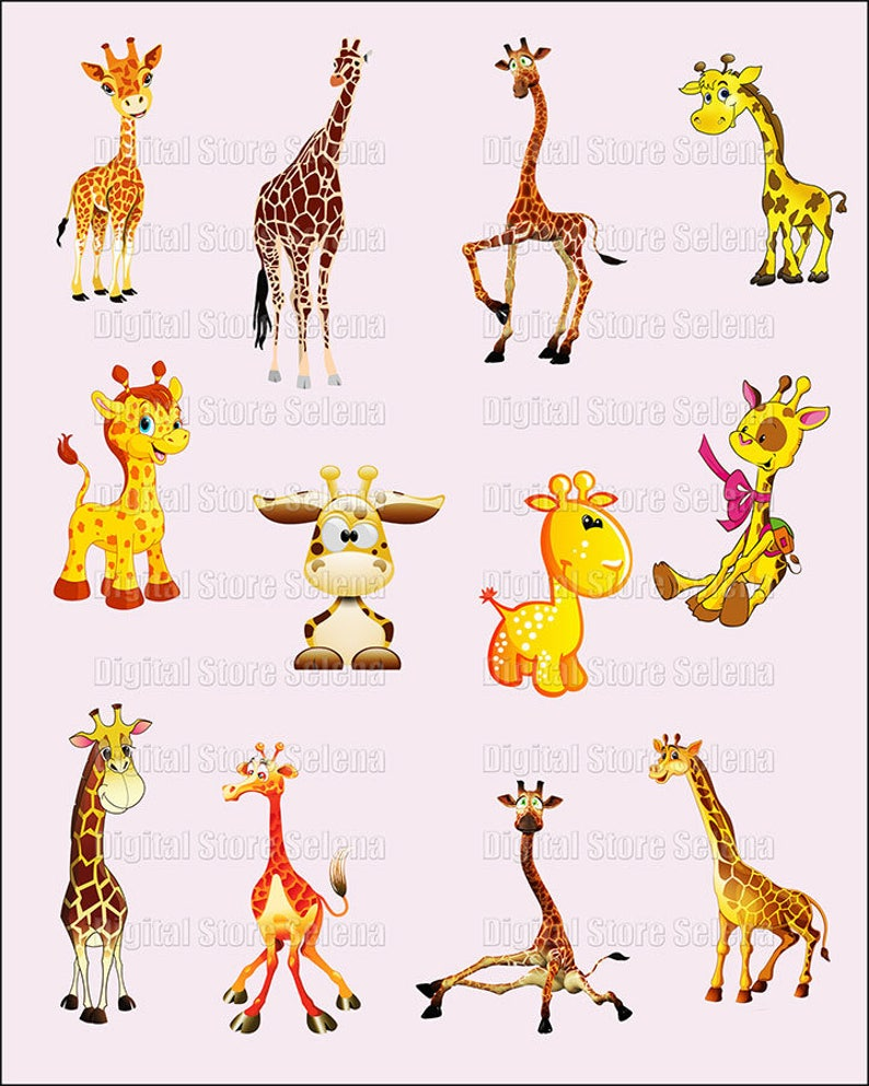 Giraffe  Clipart  Image  12 fles  PNG  Instant Download