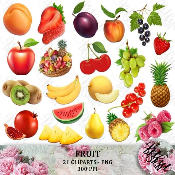 Fruit Clipart Fruit Clip Art Clipart Fruit Clip Art Fruit Etsy