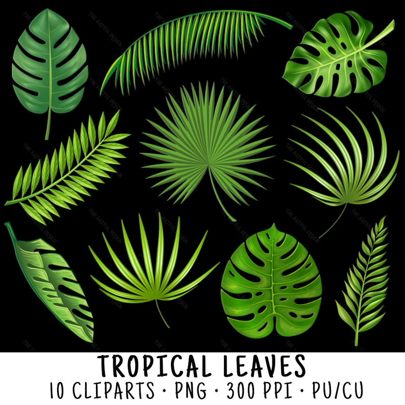 Download Png Leaves Tropical Png Gif Base Pngtree provides millions of free png, vectors. download png leaves tropical png