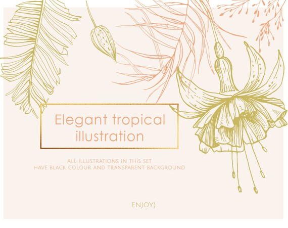 Tropical Illustrations Tropical Flowers Tropical Leaf Etsy ▪ 30 black outline (see picture 2). tropical illustrations tropical flowers tropical leaf tropical clipart palm leaves flower clipart exotic greenery flower outlines 051