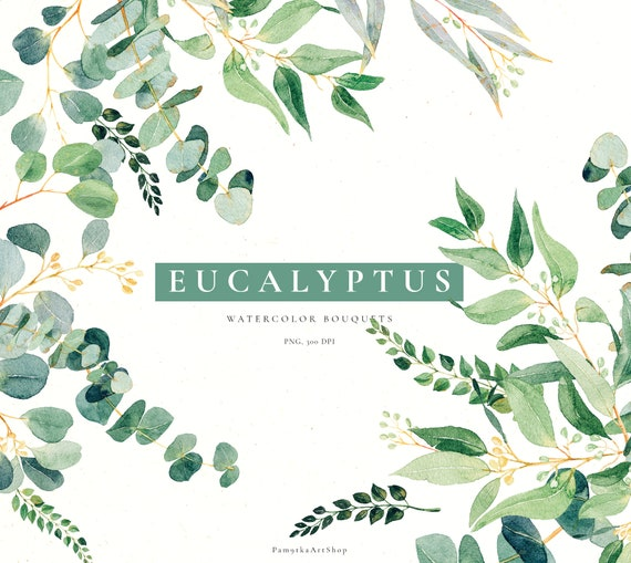 Eucalyptus Clipart Baby Blue Spiral Greenery Clip Art Watercolor Wedding Invitation Illustration Clipart Leaves Australian Baby Eucalyptus