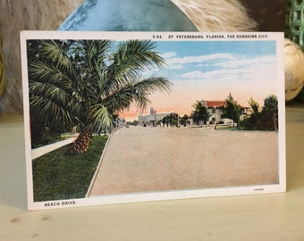 Beach Drive Vintage Postcard