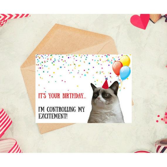 Grumpy Cat Birthday Card Printable Funny Grumpy Cat Cat Etsy