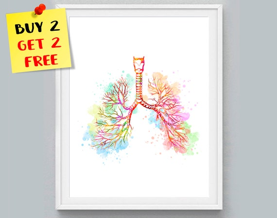 Lungs Print Bronchial Tree Watercolor Anatomy Art Lungs Wall Etsy