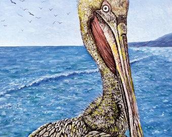 Pelican beach landscape water
