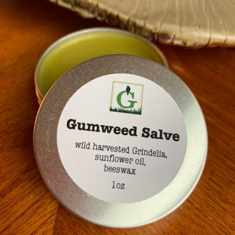 Gumweed Salve image 0