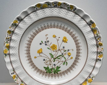 """SPODE CHINA """"BUTTERCUP"""" Dinner Plate 10 1/2"""""""