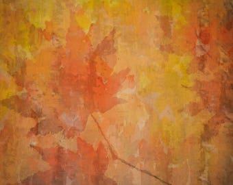 Autumn Ado