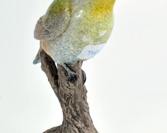Bird on the Branch