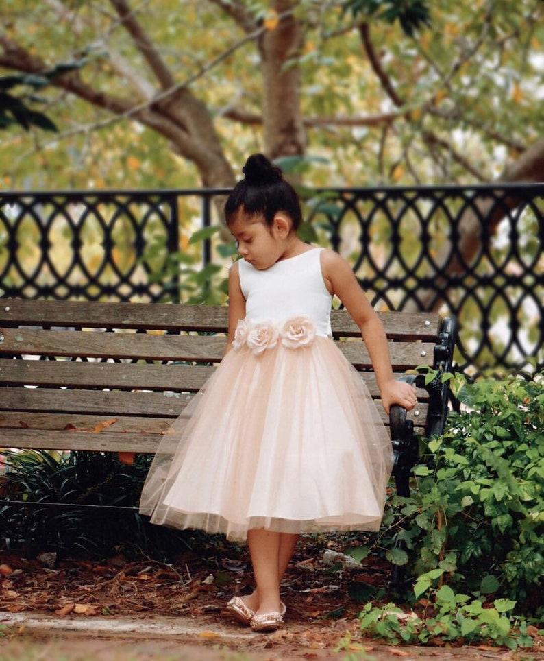 e3cab67d1e27 Ella Dress-two tone colored tulle dress with flower belt sash