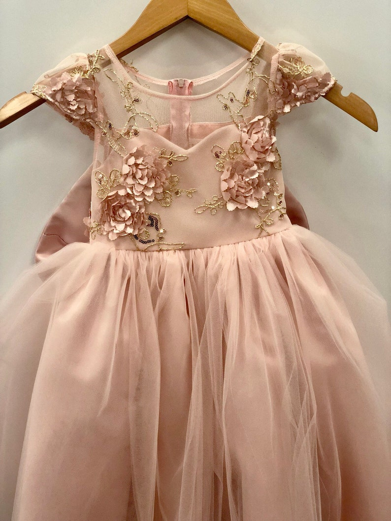 e89ad2d2b268d Isabella Dress Lace Sequin blush pink flower girl dress tulle