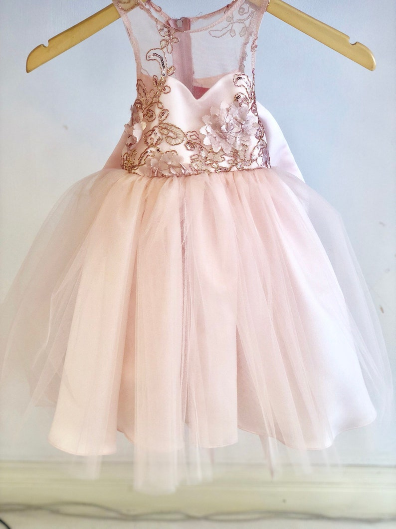 8198a74fa5e Isabella Dress Lace Sequin blush pink flower girl dress tulle