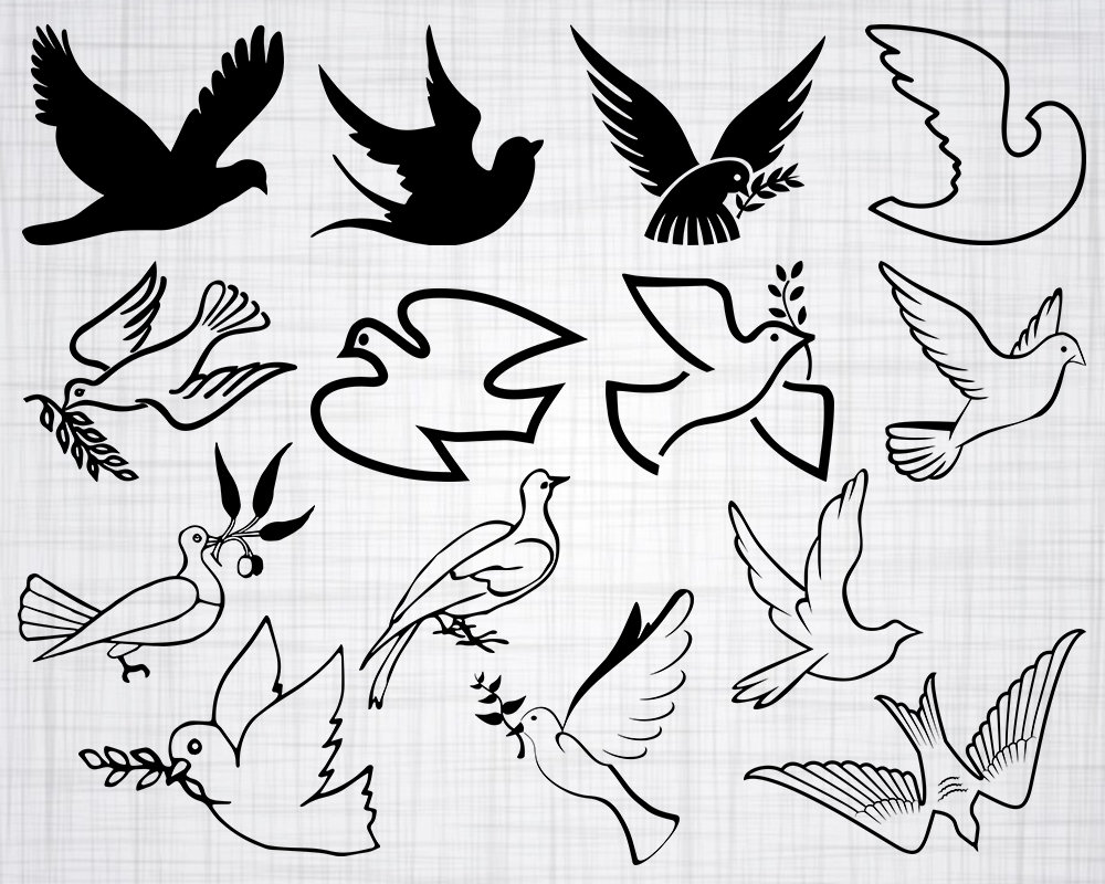 dove svg pigeon svg bird svg dove clipart pigeon clipart etsy Best Cage for a Dove 50