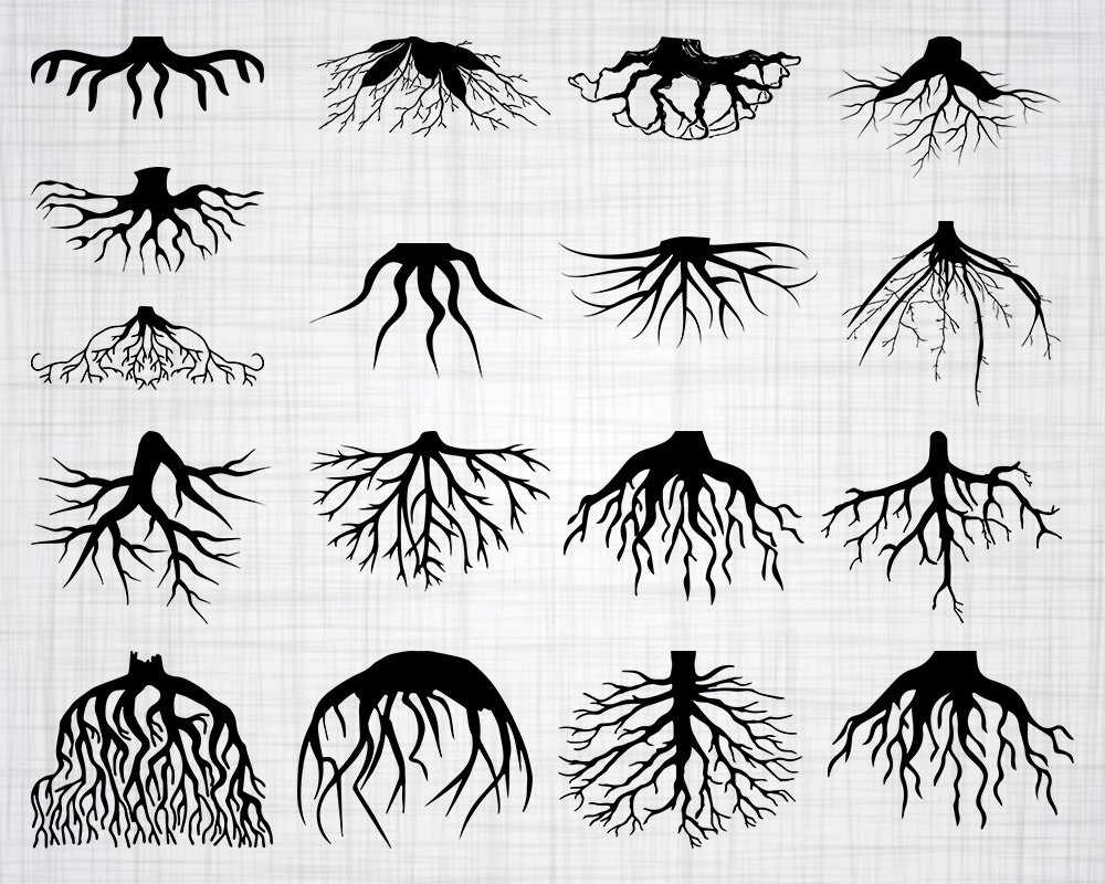 Roots SVG Bundle, Roots SVG, Roots Clipart, Roots Cut ...