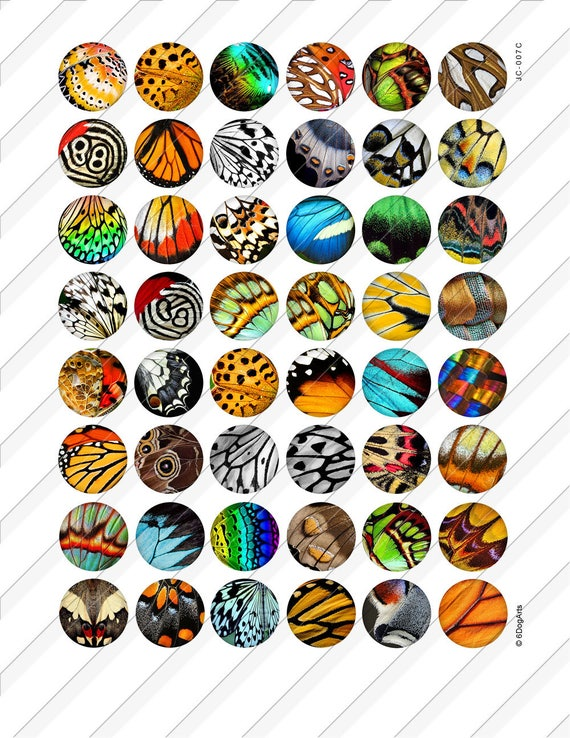 4x6 and 8.5x11 12mm circles Digital Collage Sheet glass tiles cabochon earrings images INSTANT DOWNLOAD  New Colorful Butterflies 724