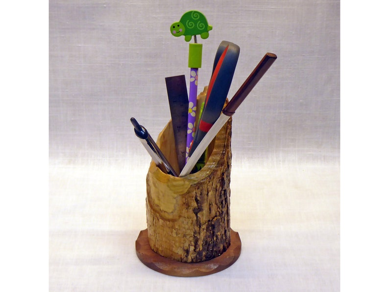 Pencil Holder Made From a Beaver-Chewed Log image 0