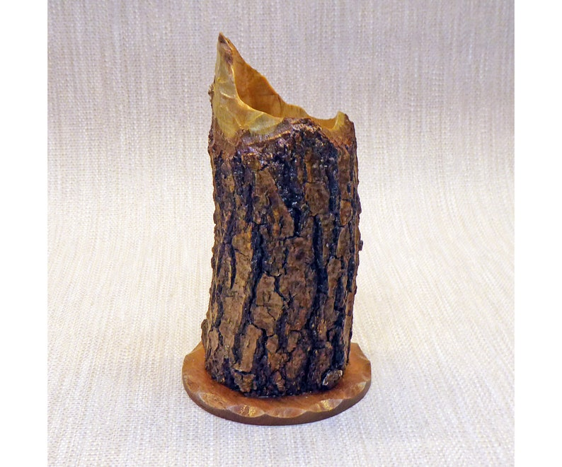 Vase Made From a Beaver-Chewed Log image 0