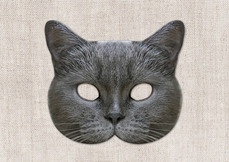 image relating to Cat Mask Printable named Scottish Grey Cat Printable Mask, Cat, Photograph-True Cat Mask, Printable Halloween Mask, Printable Mask, Cat Gown, Animal Mask, 2 Dimensions