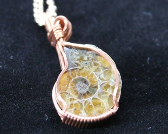 Ammonite Mini Pendant
