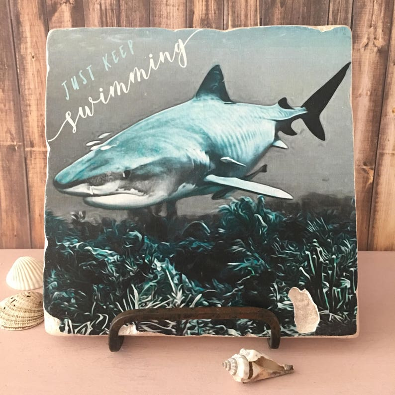 Just Keep Swimming 6x6 Stone Art Display  Tiger Shark Art  image 0