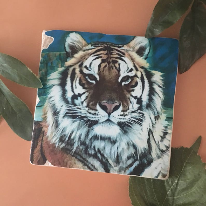 Griffen The Tiger  6x6 Stone Art Piece  Donation to The image 0
