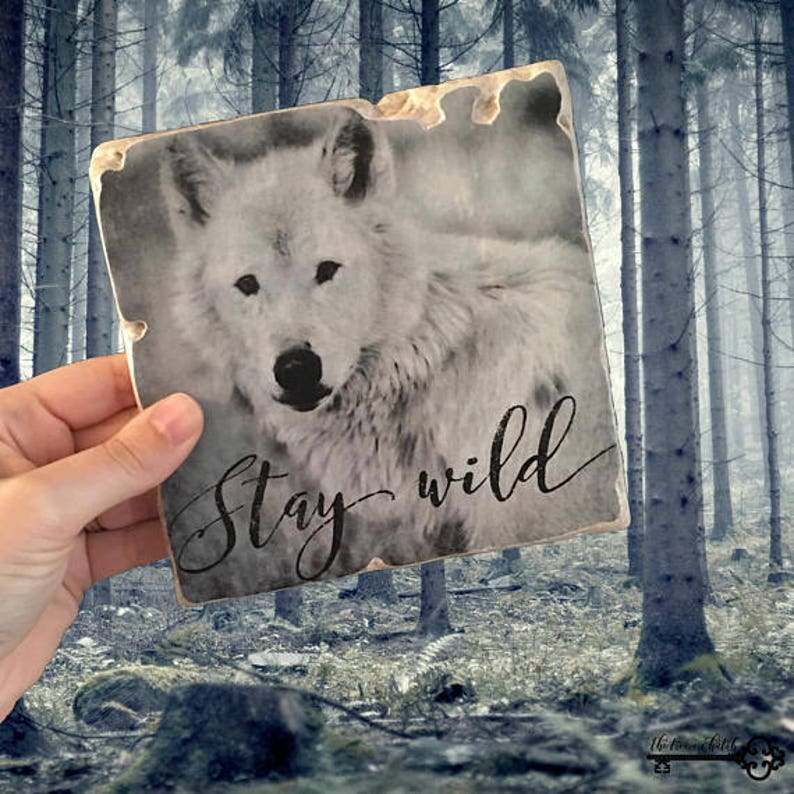 Stay Wild Wolf 6x6 Stone Art Display  Wolf Art  Donation to image 0