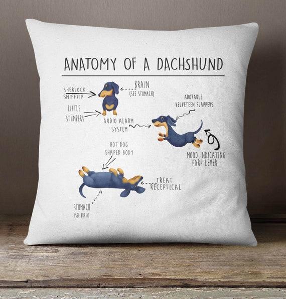 sausage dog pillow