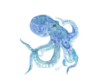 Octopus in Blue
