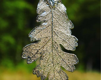 Silver Oak Genuine leaf Pendant