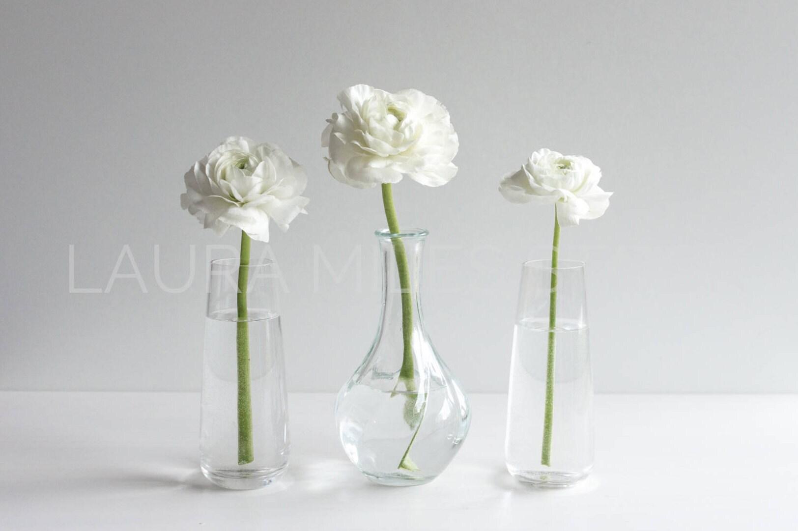 White Flowers In Vase White Ranunculus Flower Stock Photo Etsy
