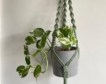Macrame plant hanger in sage green