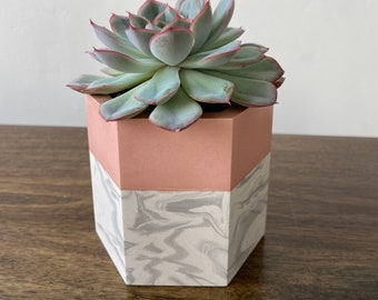 Pink and marble plant pot | hexagon plant pot