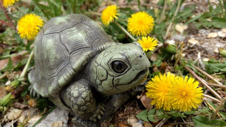 Cute turtle statue lawn ornament Grey turtle garden gift ...